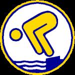 Deutsches Schwimmabzeichen - wie ist die Prüfung aufgebaut?