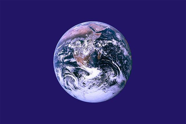 Tag der Erde - Quiz, Google Doodle und Veranstaltungen