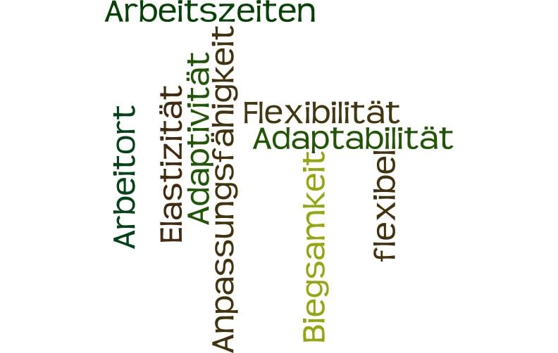 Flexibilität im Beruf > ein kostenloser Selbsttest