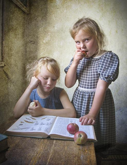 Lesekompetenz fördern - ein Selbsttest für die frühkindliche Förderung