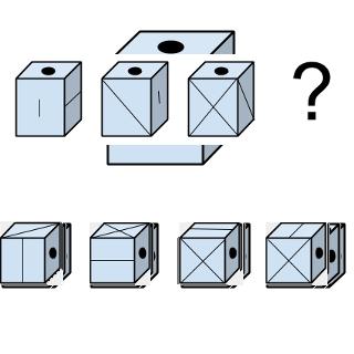 Welcher Würfel passt zur Abbildung oben? (Würfel Nr.11)