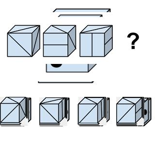 Welcher Würfel passt zur Abbildung oben? (Würfel Nr.8)